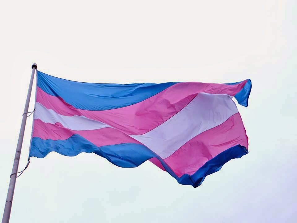 Em um ano, as causas trans avançaram muito, agora elas podem mudar seus nomes no cartório