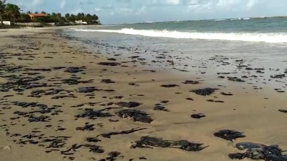 óleo da praia