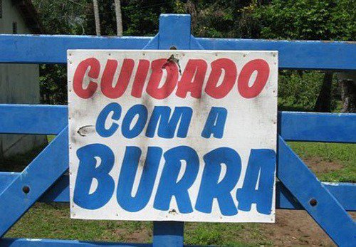 Cuidado com a Burra